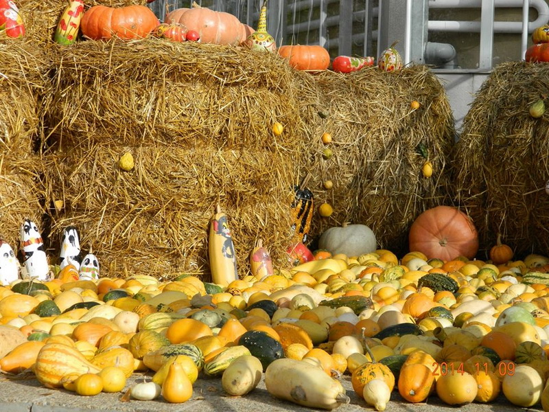 Simpozionul de Agro Economie si Antropologie Rurala